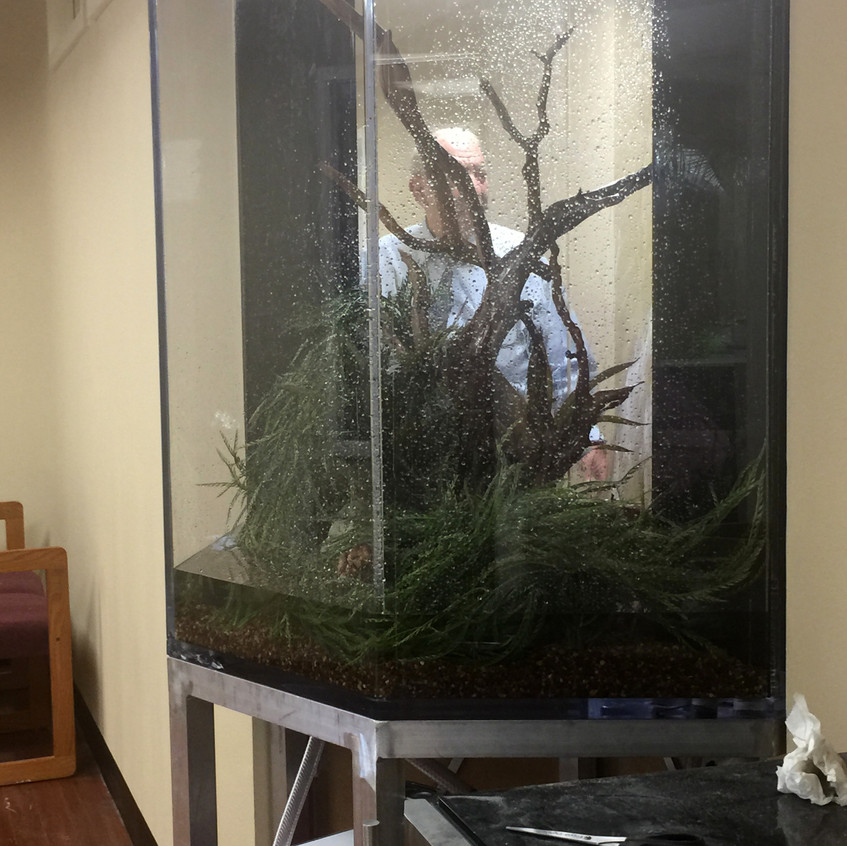 8-Begin the Fill of FreshWater Aquarium