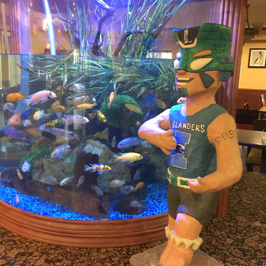 3-Izzy Arrives at the Aquarium