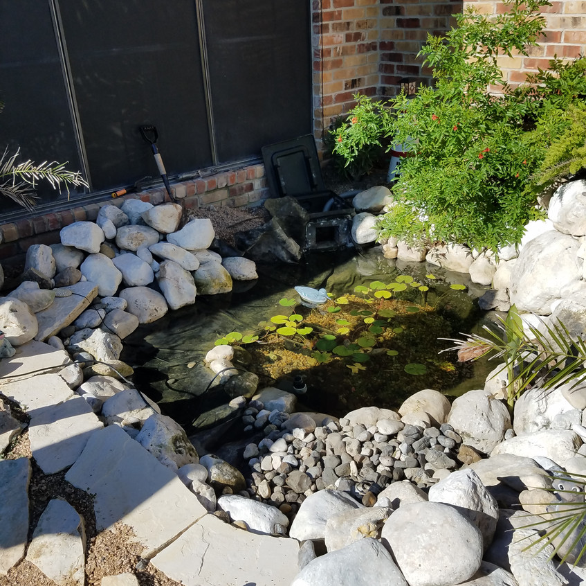 1-First Look Leaking Backyard Pond
