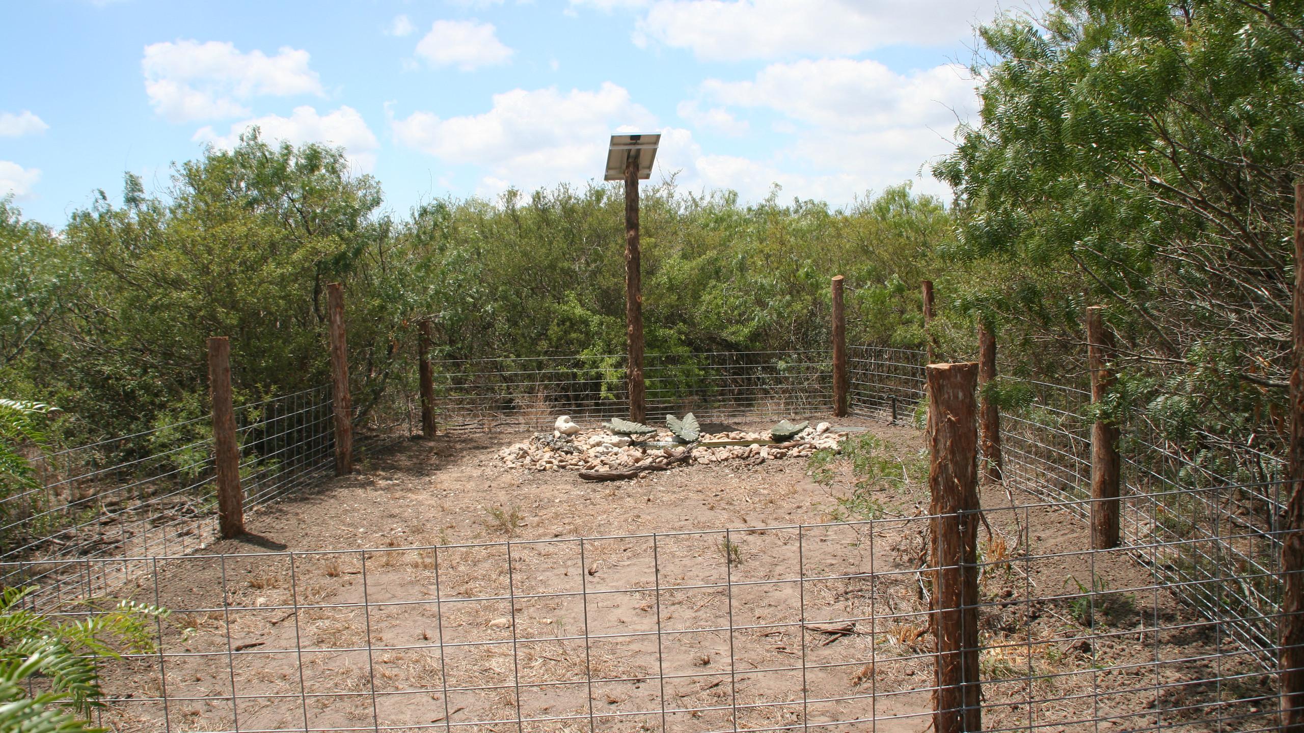 23-Final View Solar Water Feature Birding Area