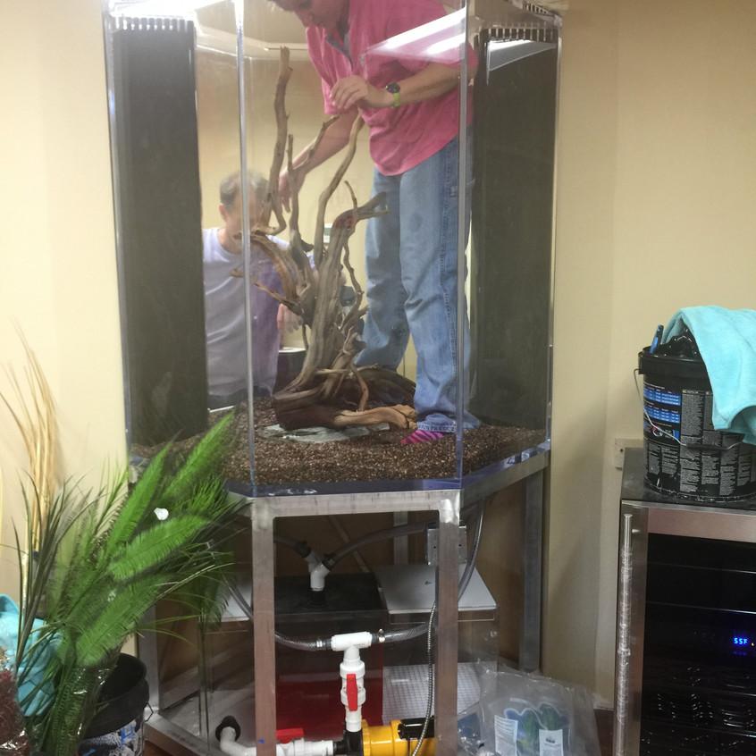 6-FreshWater Aquarium Deco Install