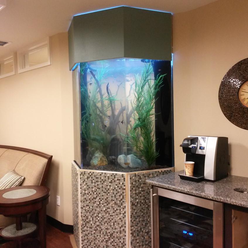 14-FreshWater Aquarium