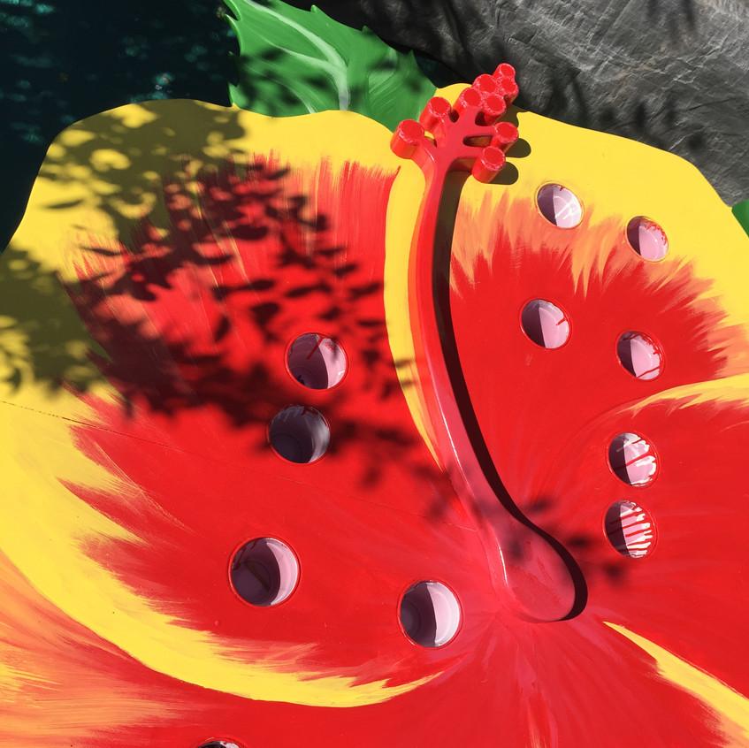 8-Beautiful Hibiscus Flower