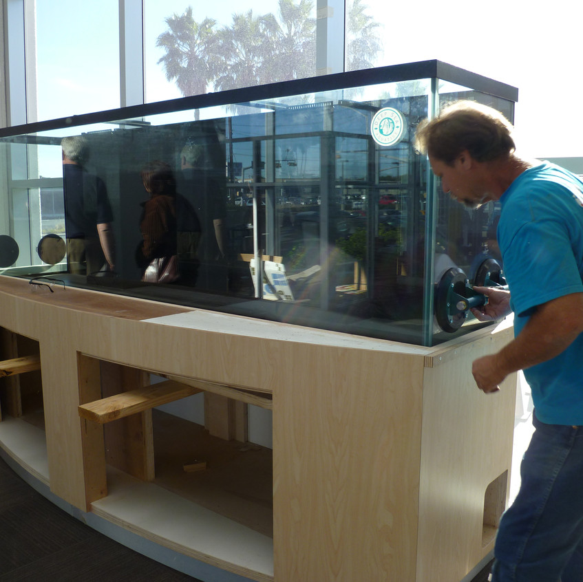 10-Placement of SaltWater Aquarium & Stand