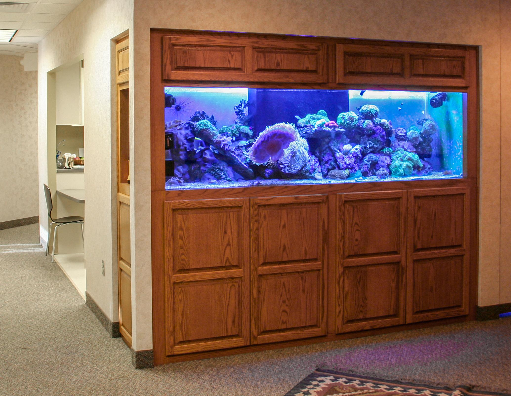 Aquariums-1