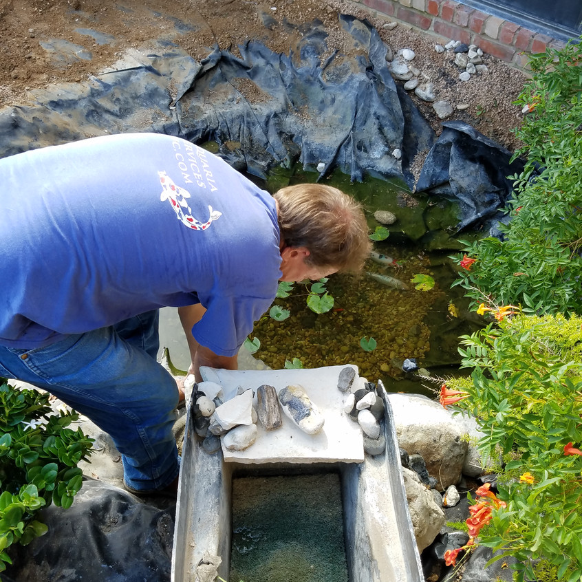 3-Dismantiling Existing Backyard Pond