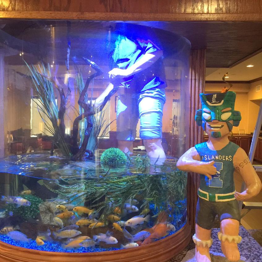 4-Prepping the Aquarium for Izzy Install