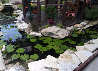 Detailed Rock Work on a Pond Enlargment