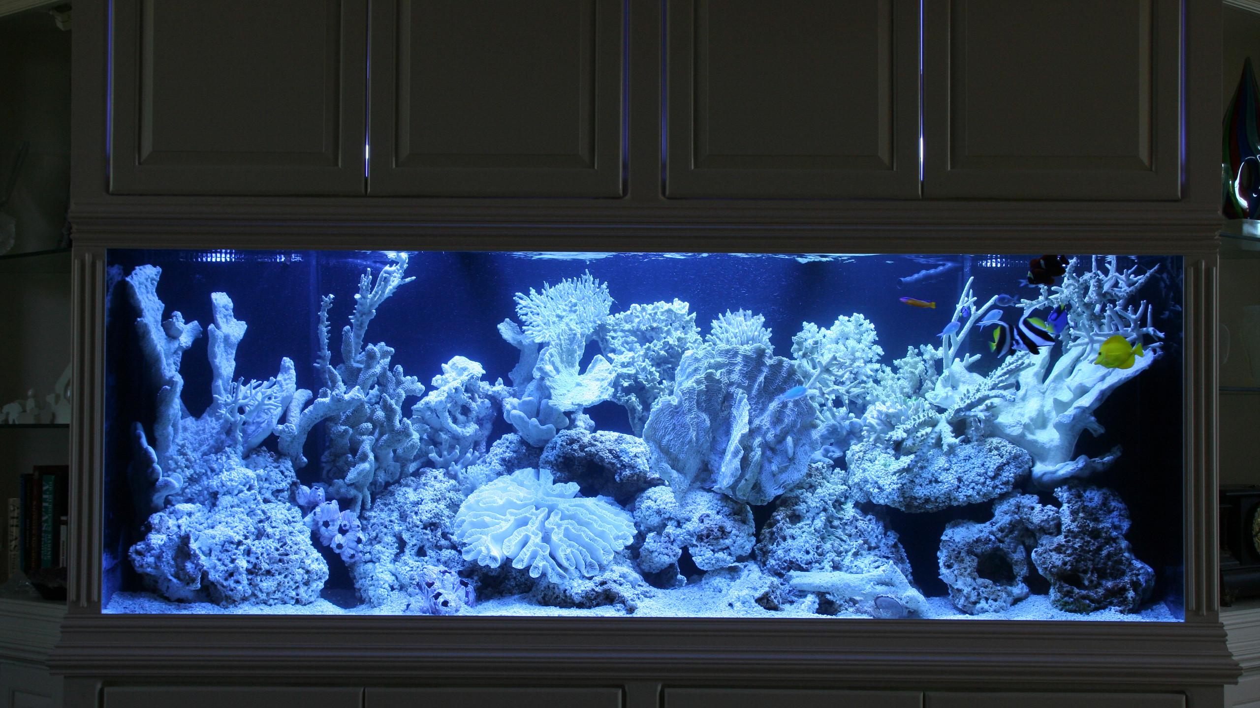 22-Finished Aquarium
