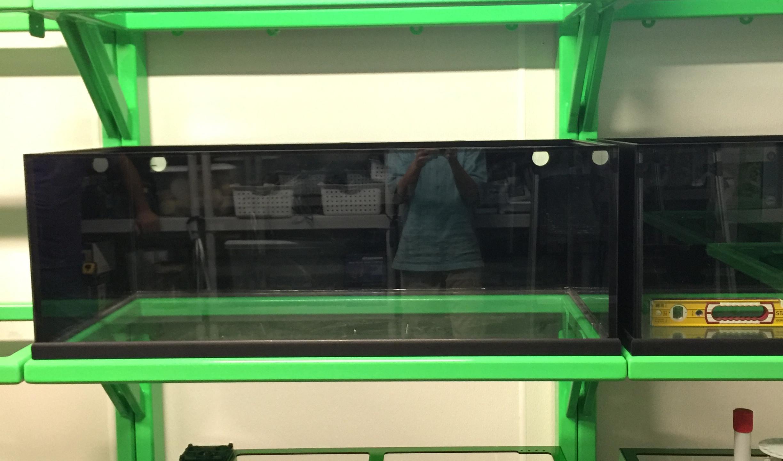 10-Aquarium Bank with Filter