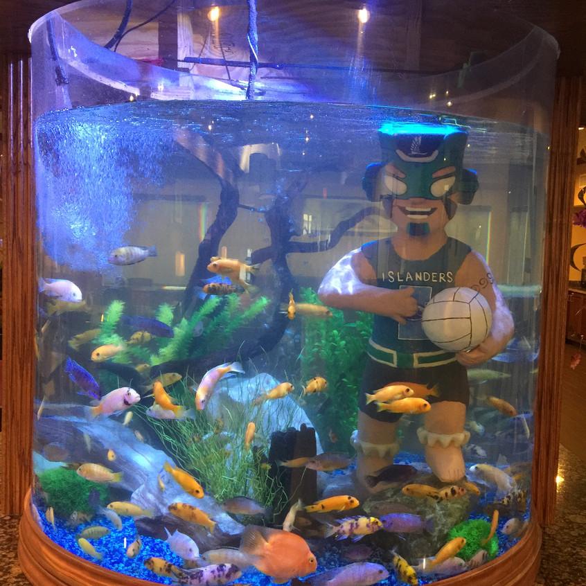 12-Filling the Aquarium