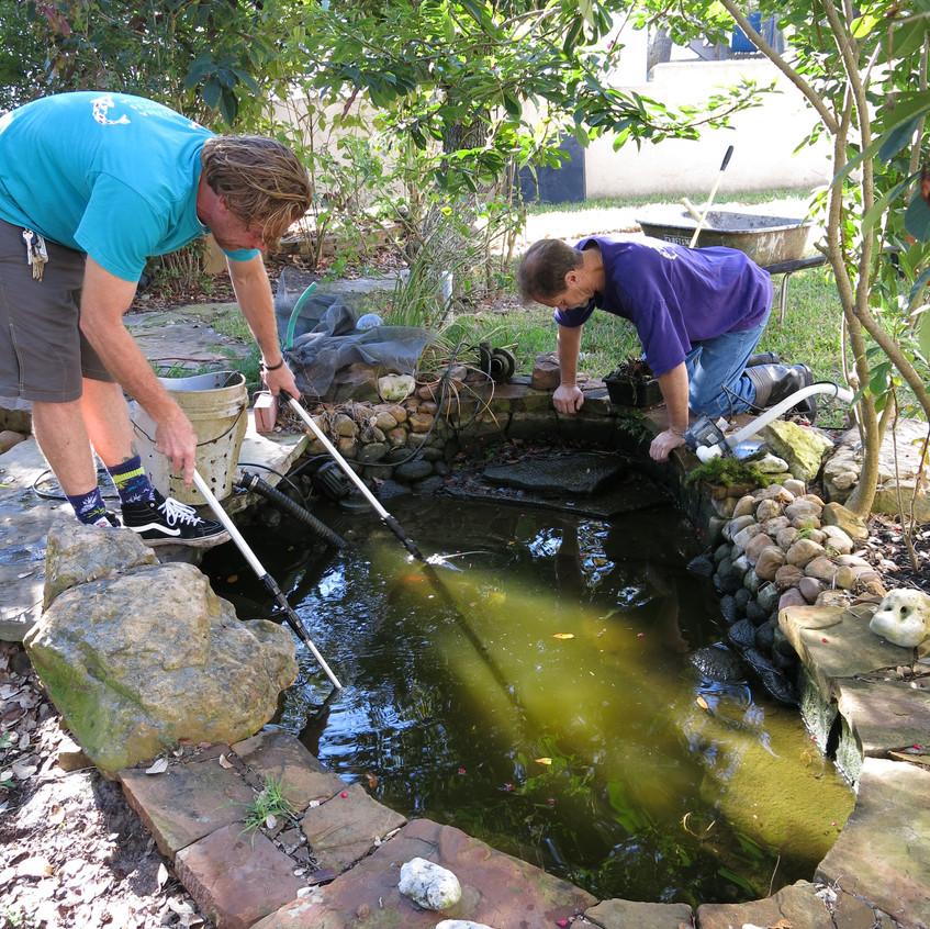 1-Begin MuckOut of Pond