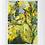 Thumbnail: Sunshine & Daffodils