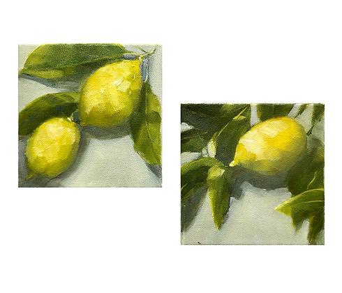 Lemon Trio(Pair)