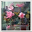 Thumbnail: Pink Flamigeons