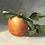 Thumbnail: Golden Apple