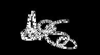 Mercedes Signature graphic