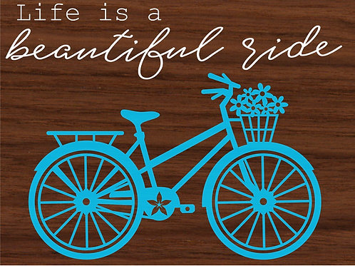 Life is a Beautiful Ride PE