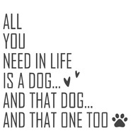 all you need in life is a dog.jpg