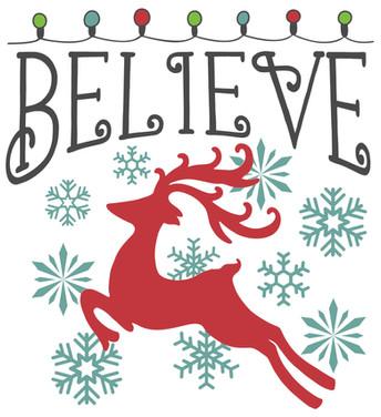 Believe christmas lights.jpg