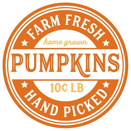 Farm Fresh Pumpkins 9/18/19