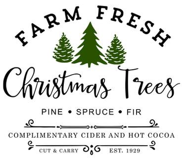 farm fresh xmas trees 12x14.jpg