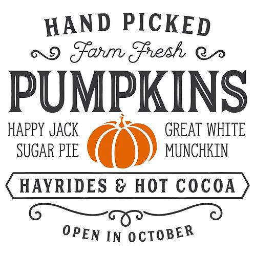 Pumpkins Custom Take Home Kit