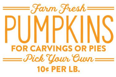 Farm fresh pumpkins 1.jpg