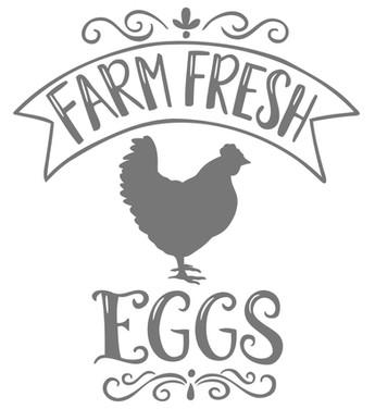 Farm Fresh Eggs.jpg