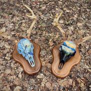 Deer Skulls.jpg
