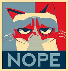 grumpy cat nope.jpg