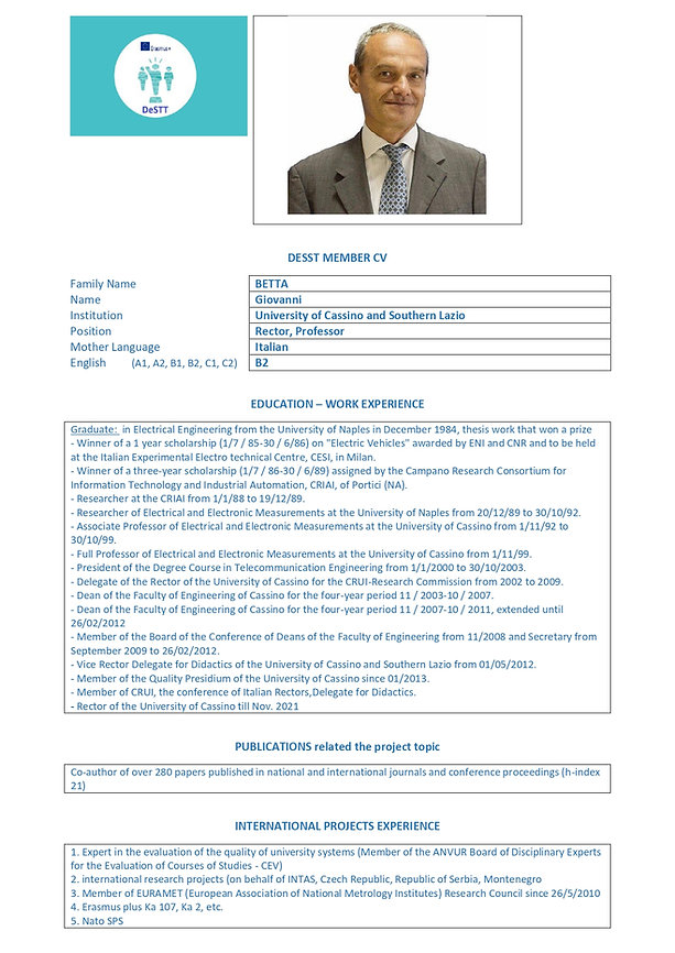 format CV DESTT Betta_page-0001.jpg