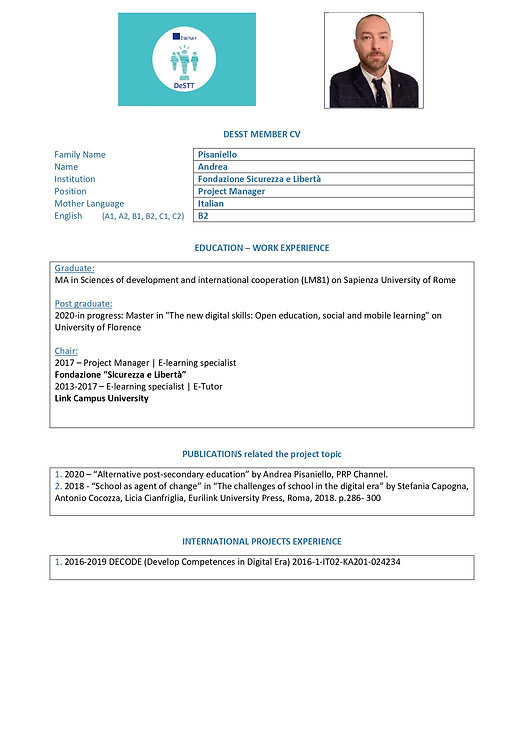 format Pisaniello CV DESTT_page-0001.jpg
