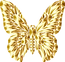 butterfly-5420631_1280.png
