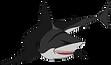 Shimek Shark.png