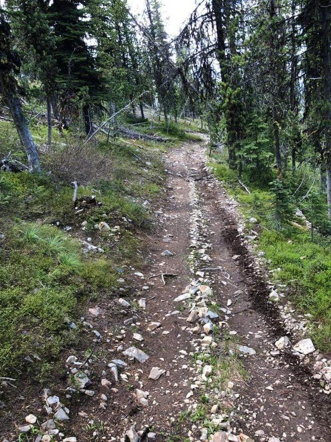 Montana back roads