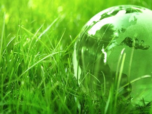 Our Committment to the Environment