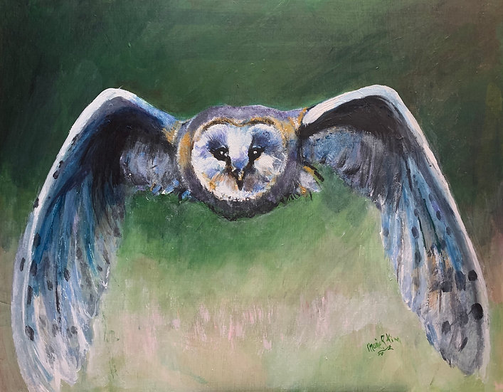 Symmetry Owl