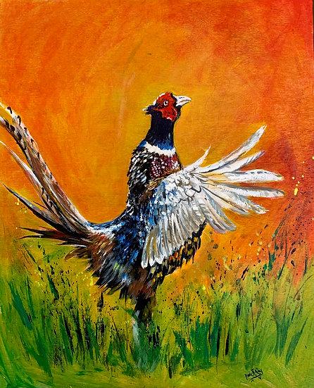Exuberant Pheasant