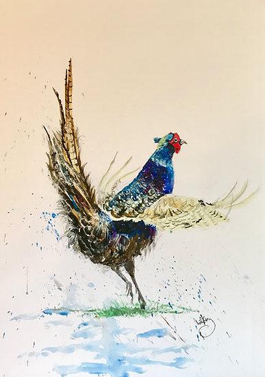 Fluttering Pheasant