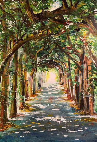 Leafy Walkway