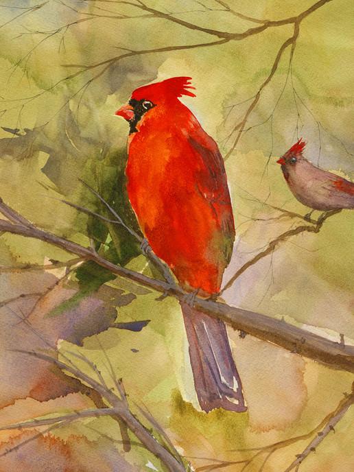 Cardinal card sized.jpg