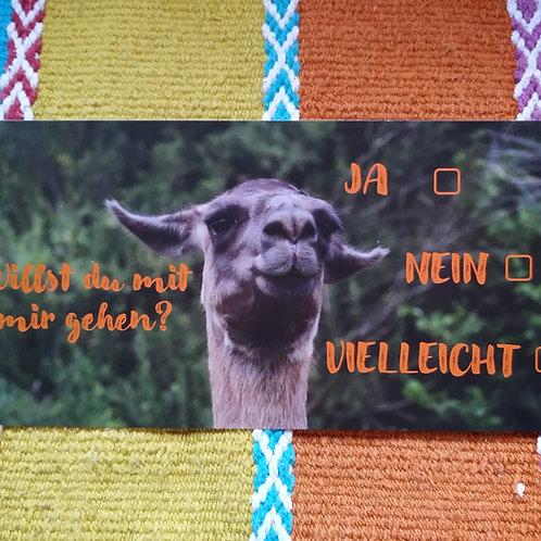 Gutschein Lama- und Alpakaspaziergang