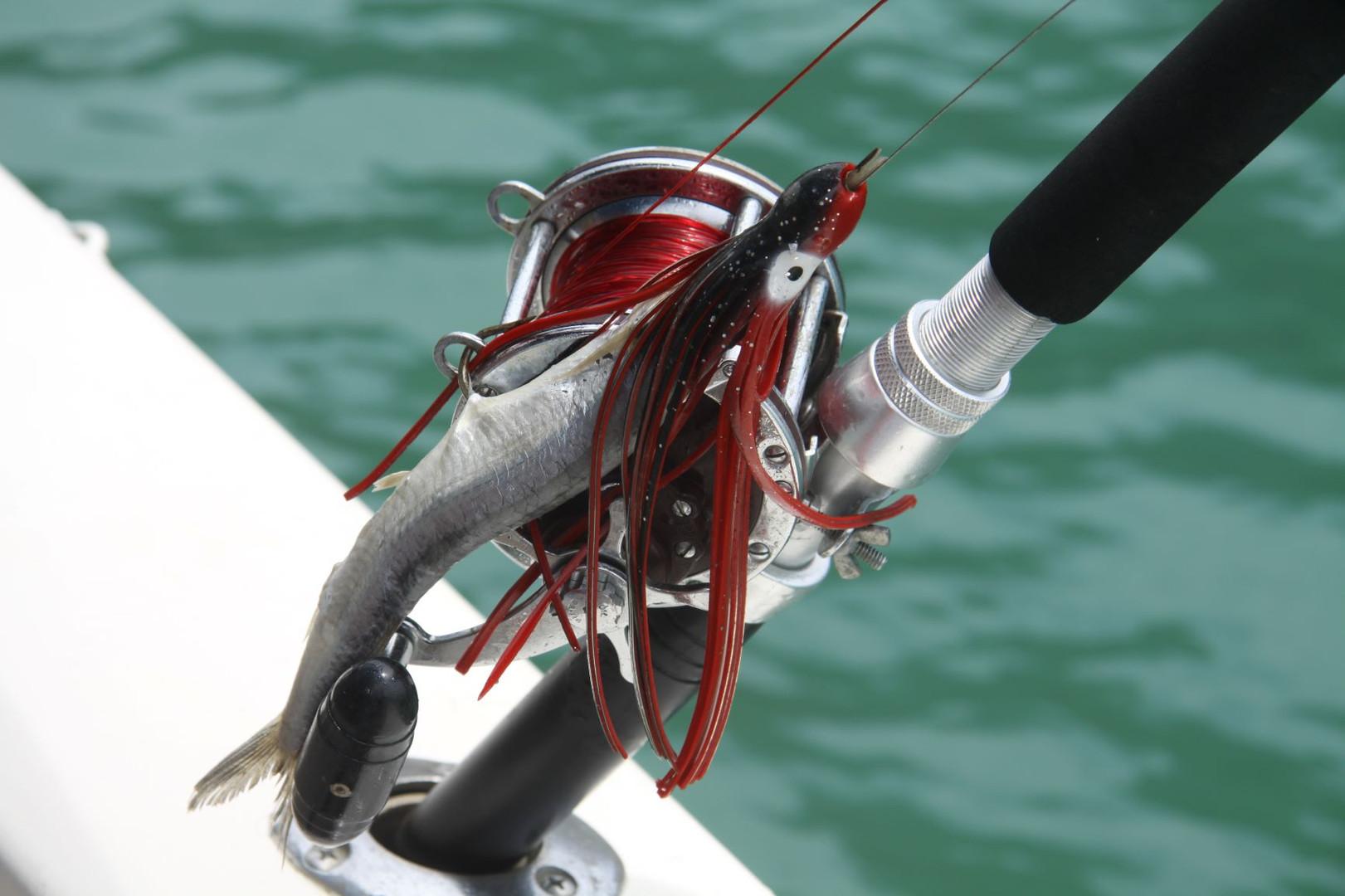 #019 fiskedrag, san juan del sur, nicaragua