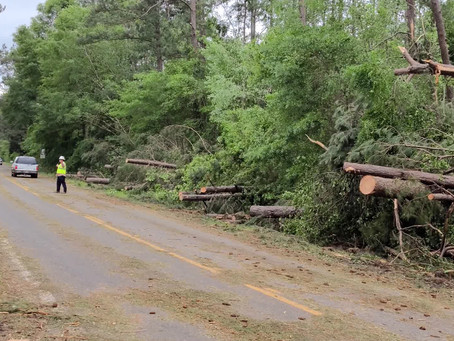 City of Meridian announces storm damage reporting deadline