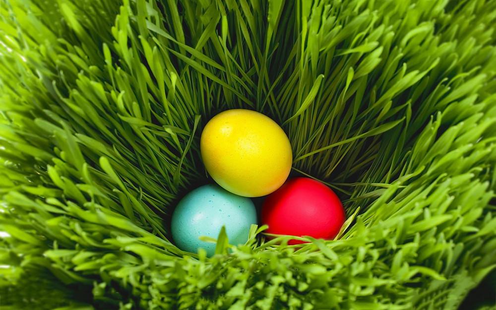 Easter Eggs in Grass.jpg