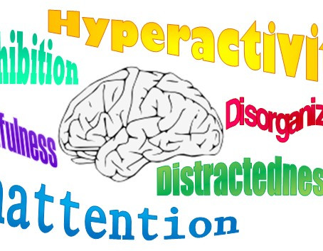 Executive Functioning... Why We Do What We Do