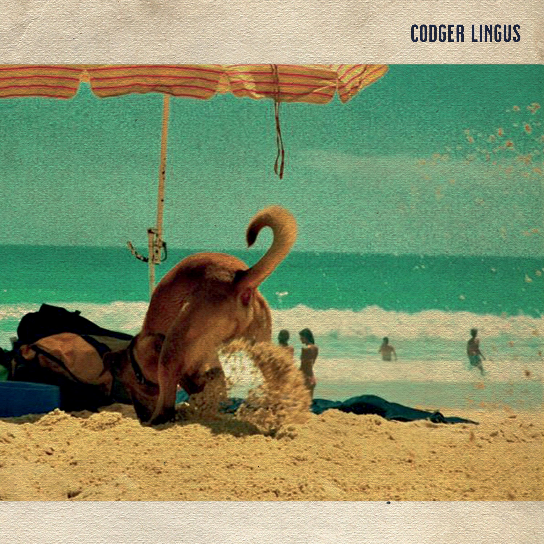 CODGER LINGUS