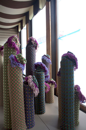 Meet the Cacti, Shy, Spry and Sly