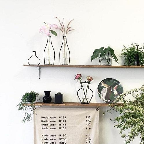 Plant Iron Terrarium